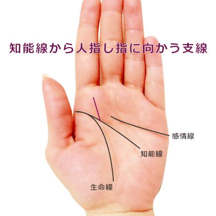 知能線から人指し指に向かう支線がある手相