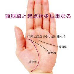 生命線と頭脳線の起点の状態の標準