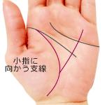 生命線から小指に伸びる支線がある手相