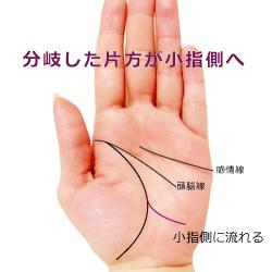 生命線の大きな分岐の片側が小指へ向かう手相