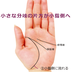 生命線の小さい二又の先が小指側へ流れる手相