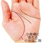 小指側に流れる生命線の小さな二股