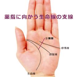 生命線の支線が薬指に向かう手相 努力線