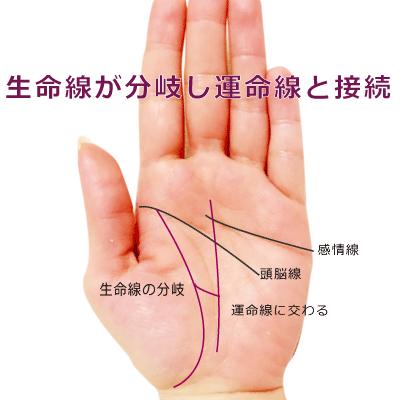 生命線が分岐して運命線に接続している手相