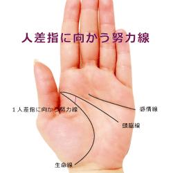 人差し指に向かう努力線(向上線)