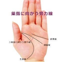 薬指に向かう努力線(太陽線)