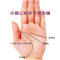 小指に向かう努力線(財運線)