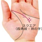 頭脳線の四角紋井の字スクエア