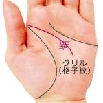 頭脳線のグリル格子紋