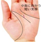 頭脳線の支線が短く中指に向かう手相