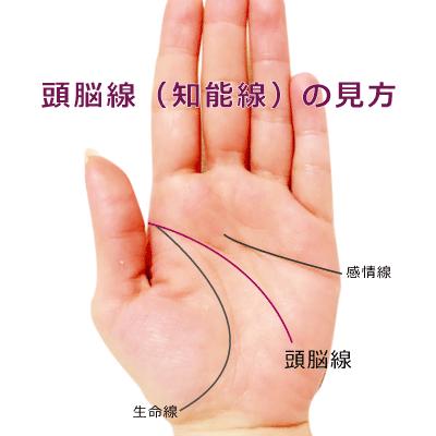 手相の頭脳線の見方