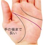 手のひらの端や側面まで長い頭脳線