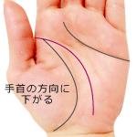 手首の方向に下がる頭脳線