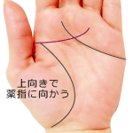 上向きで薬指に向かう頭脳線