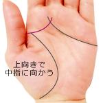 上向きで中指に向かう頭脳線