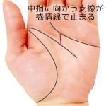 頭脳線の支線が中指に向かい感情線で止まる手相