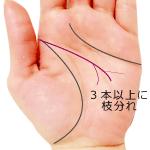 頭脳線の先端が3つ以上に枝分かれ