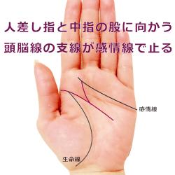頭脳線の支線が人差し指と中指の股に向かい感情線で止る手相
