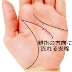 頭脳線の細い支線が親指側に流れる手相