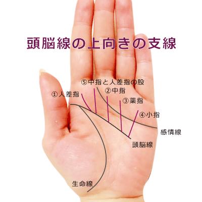 頭脳線から伸びる上向きの支線