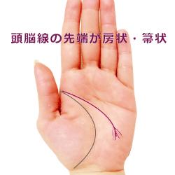 頭脳線の先端が房状の手相