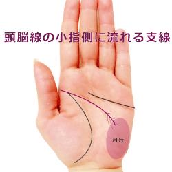 頭脳線から小指側に流れる支線
