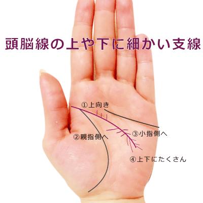 頭脳線の上や下に細かい支線がある手相