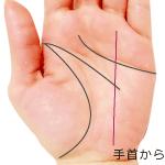 手首付近から太陽線が伸びる手相