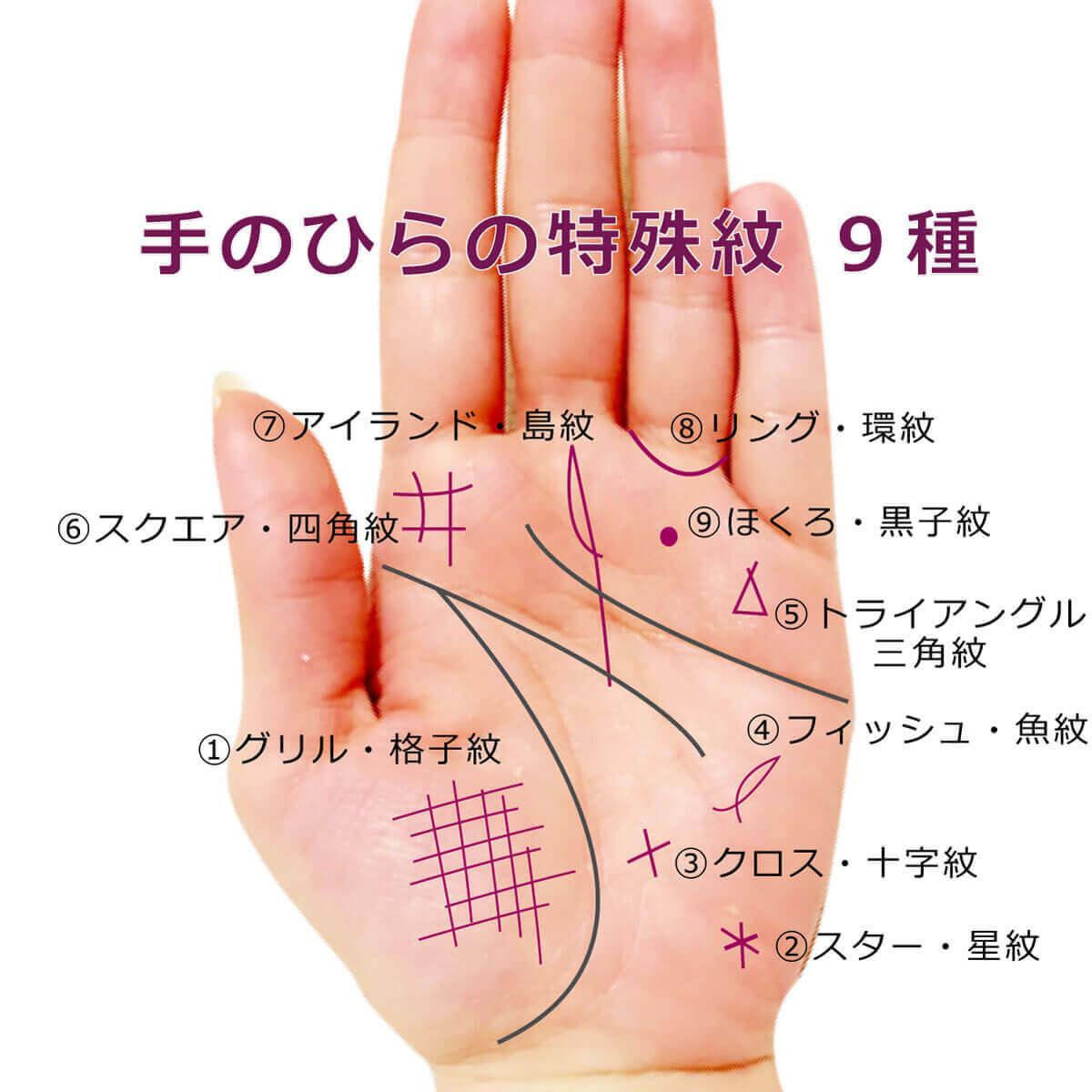 手のひらの特殊紋一覧